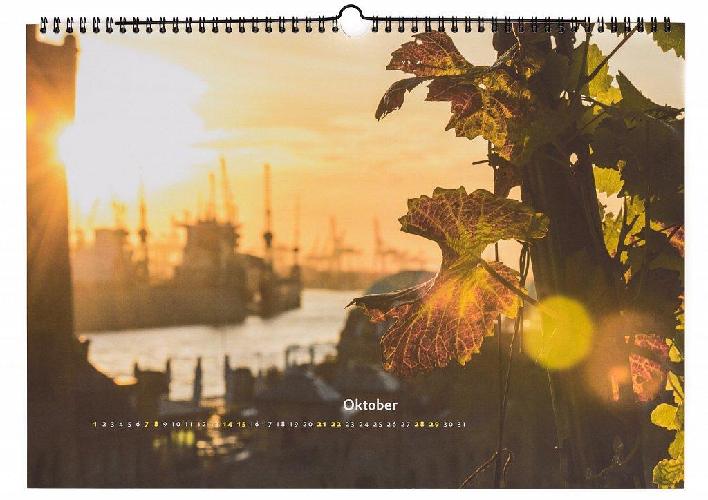 Pixx-Kalender-2017-11-von-14.jpg